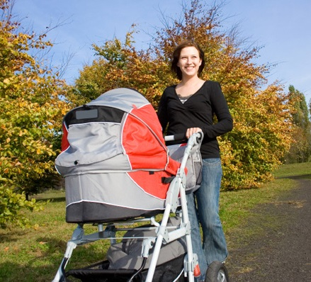 mother-pushing-stroller-in-park